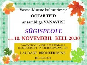 10.november AVapidu